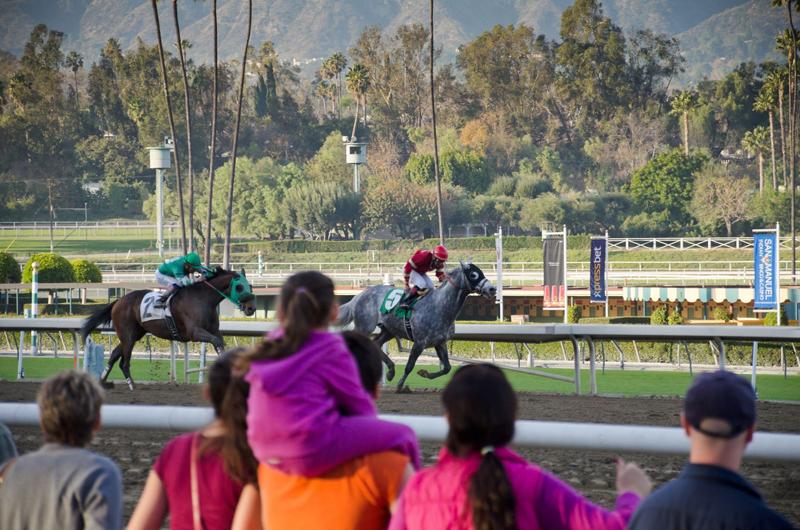 観客とレース
